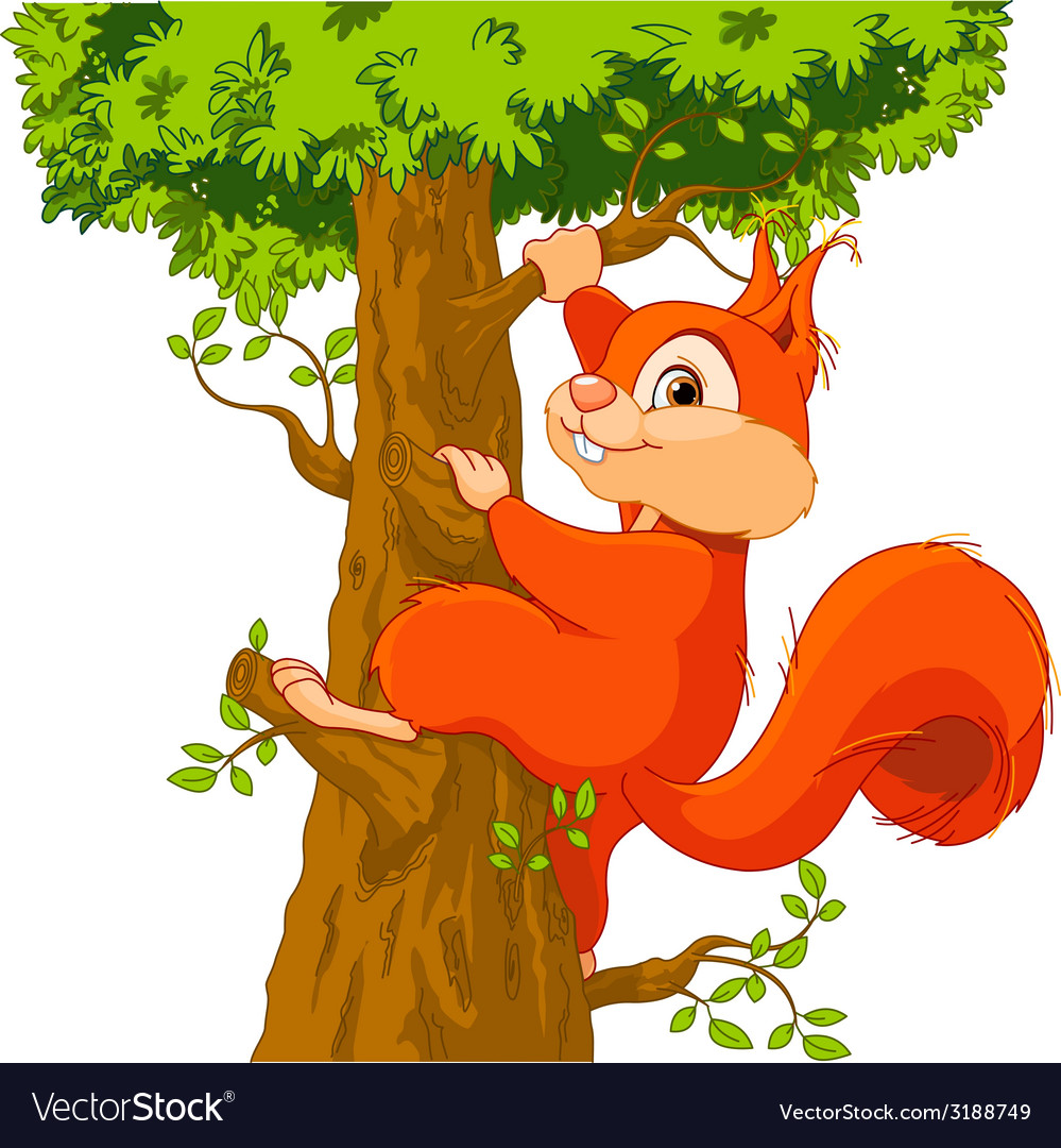 Squirrel on the tree vector | Price: 1 Credit (USD $1)
