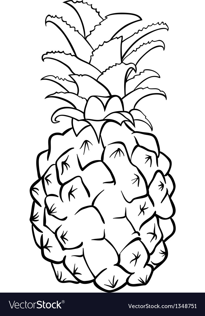 Pineapple fruit for coloring book vector | Price: 1 Credit (USD $1)