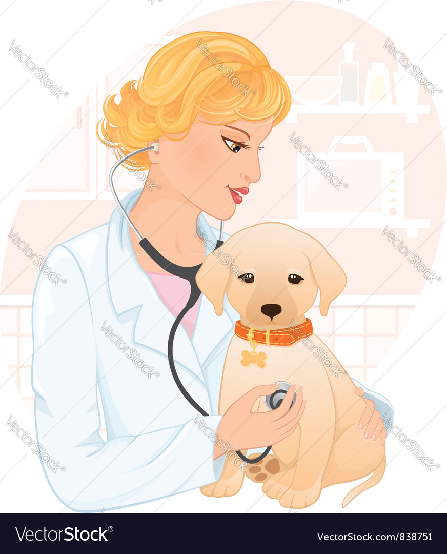 Veterinarian vector | Price: 3 Credit (USD $3)