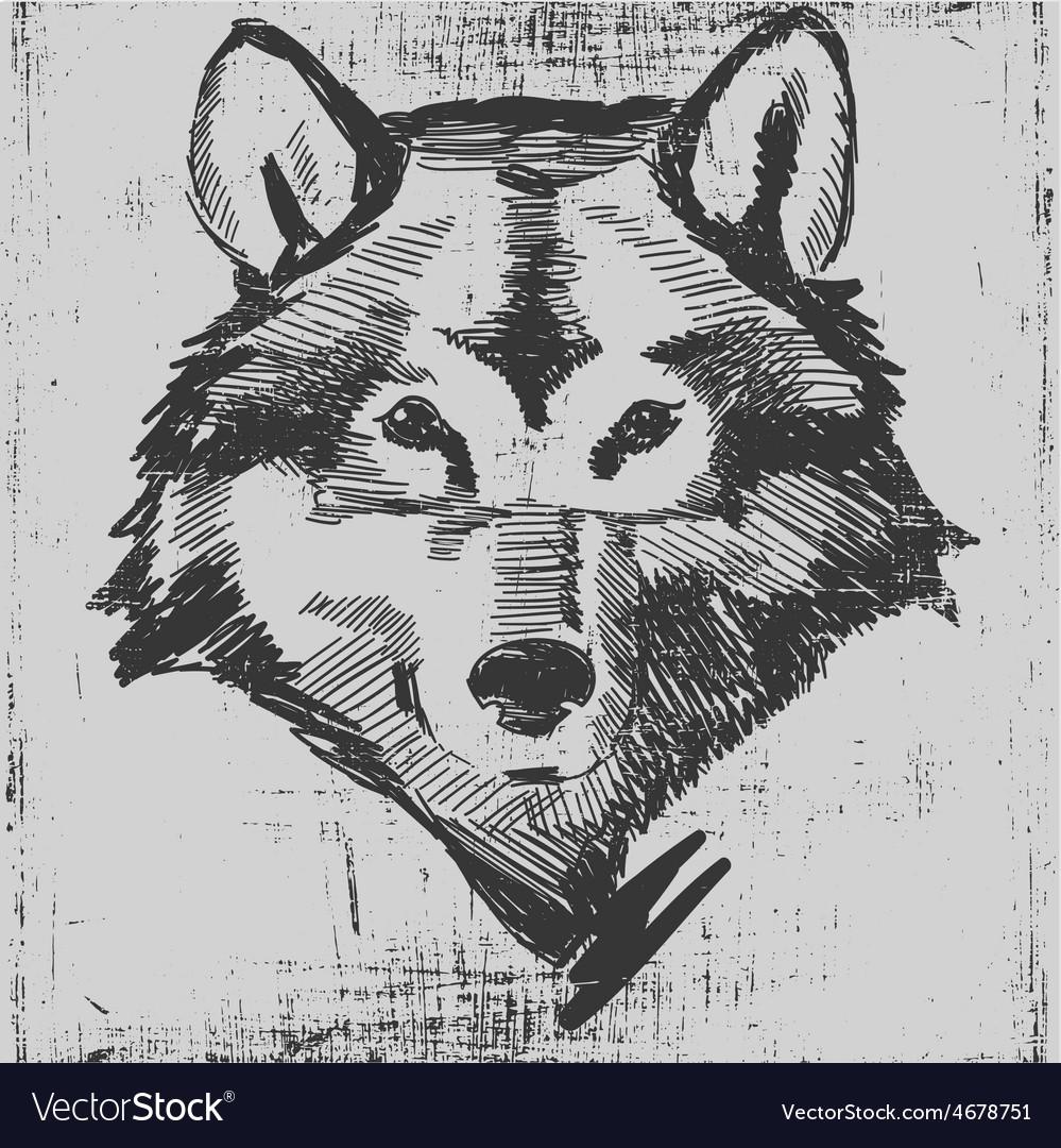 Wolf head hand drawn sketch grunge texture vector | Price: 1 Credit (USD $1)
