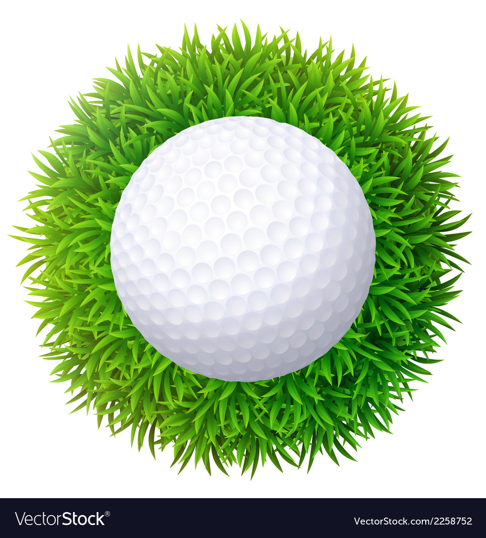 Ball for golf on green grass isolated on white bac vector | Price: 1 Credit (USD $1)