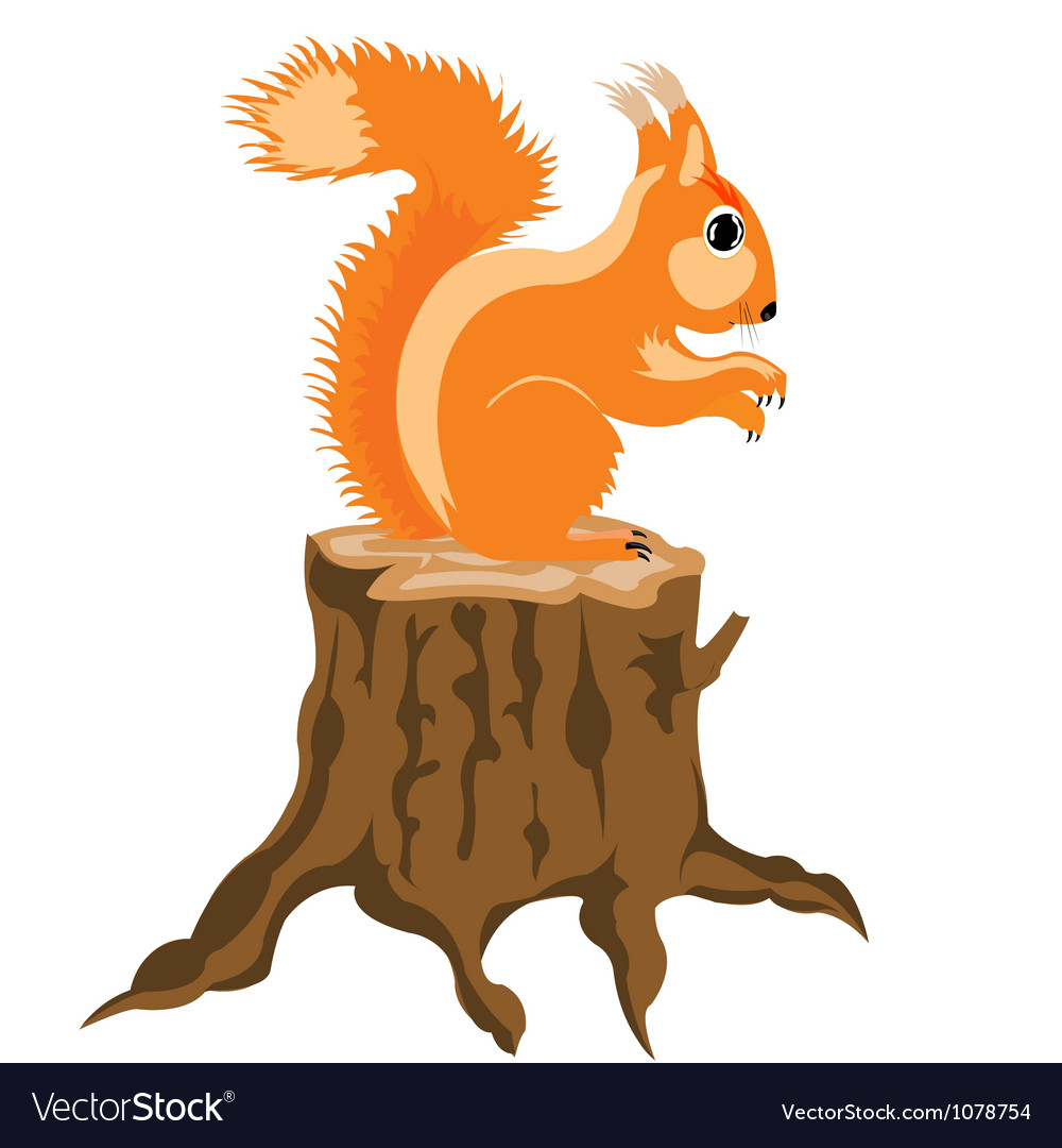 Squirrel sits on hemp vector | Price: 1 Credit (USD $1)