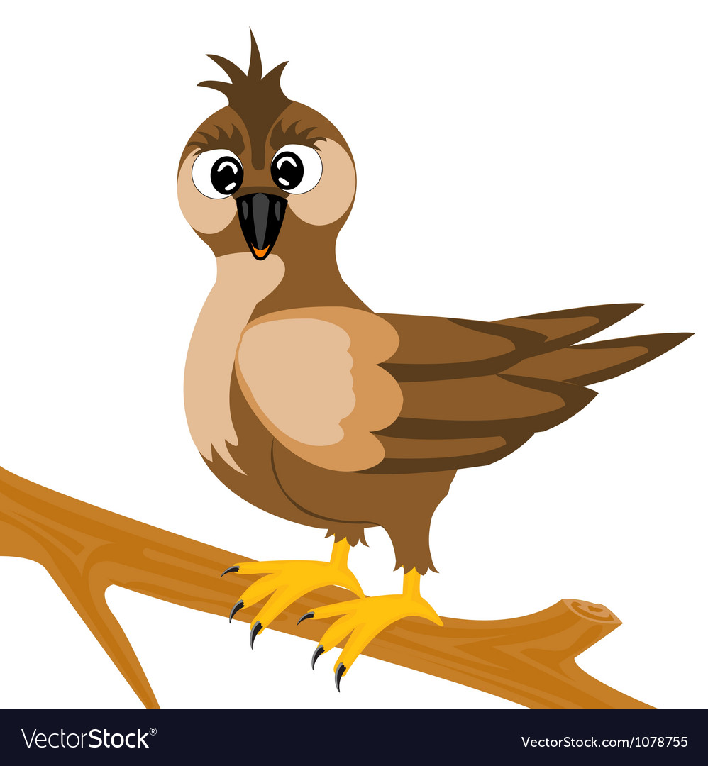 Sparrow on branch vector | Price: 1 Credit (USD $1)