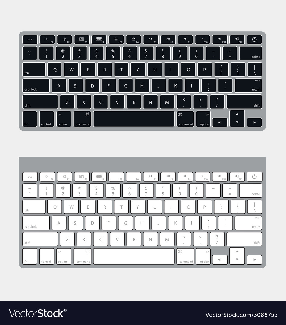 Two keyboards vector | Price: 1 Credit (USD $1)