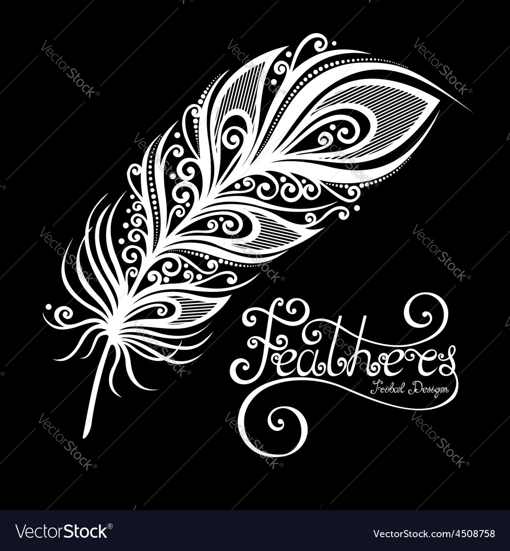 Peerless decorative feather vector   Price: 1 Credit (USD $1)