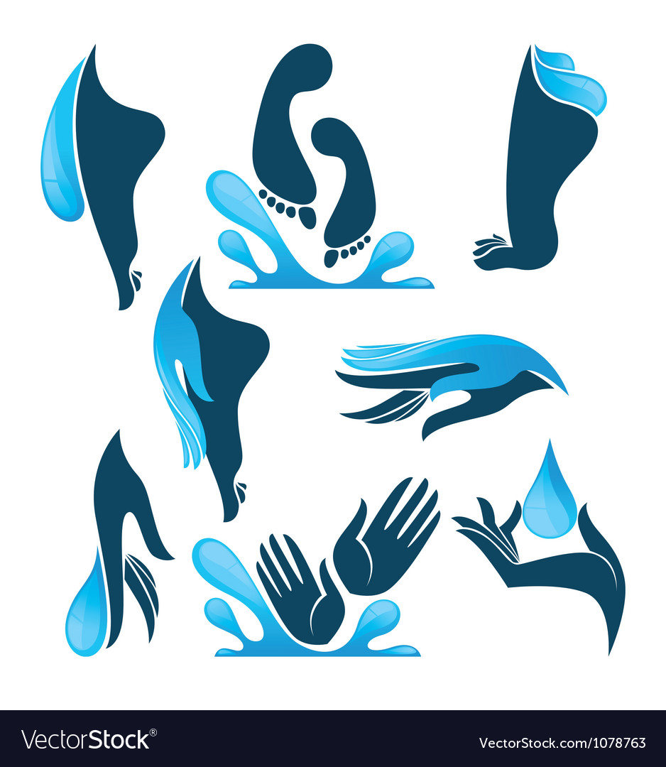 Life in water clean hands and feet vector | Price: 1 Credit (USD $1)