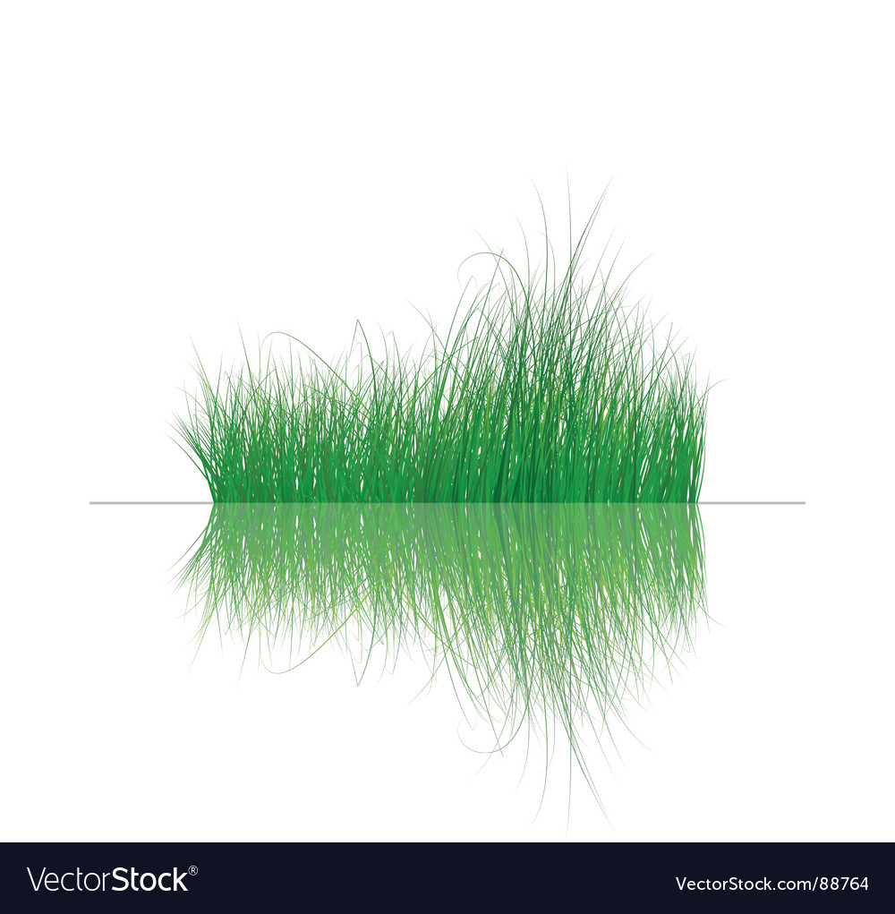 Grass on water vector | Price: 1 Credit (USD $1)