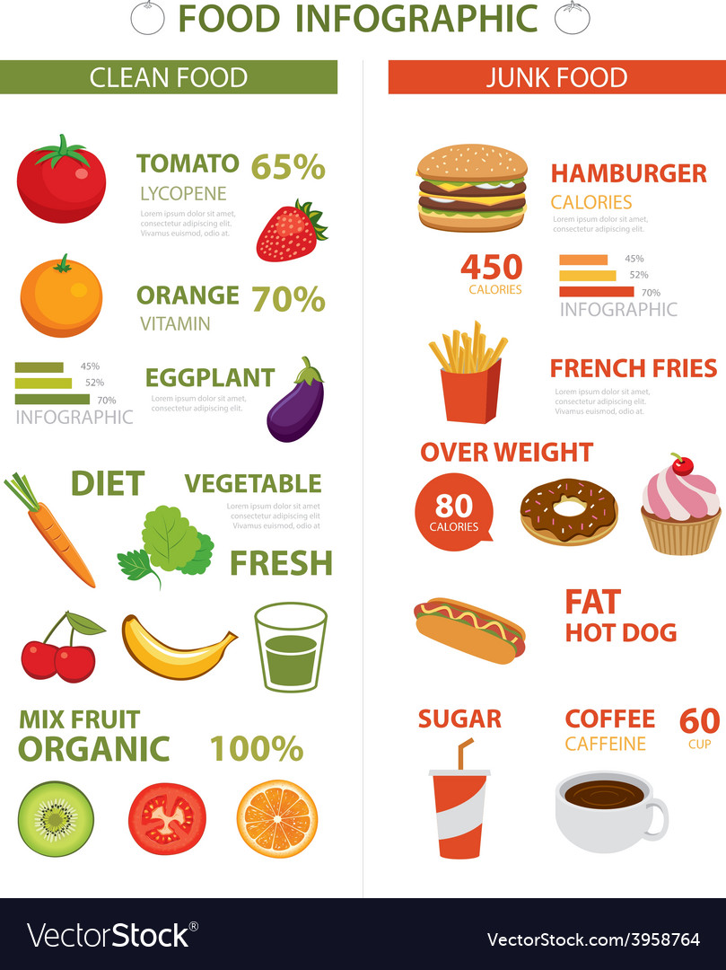Healthy and junk food infographic vector | Price: 1 Credit (USD $1)