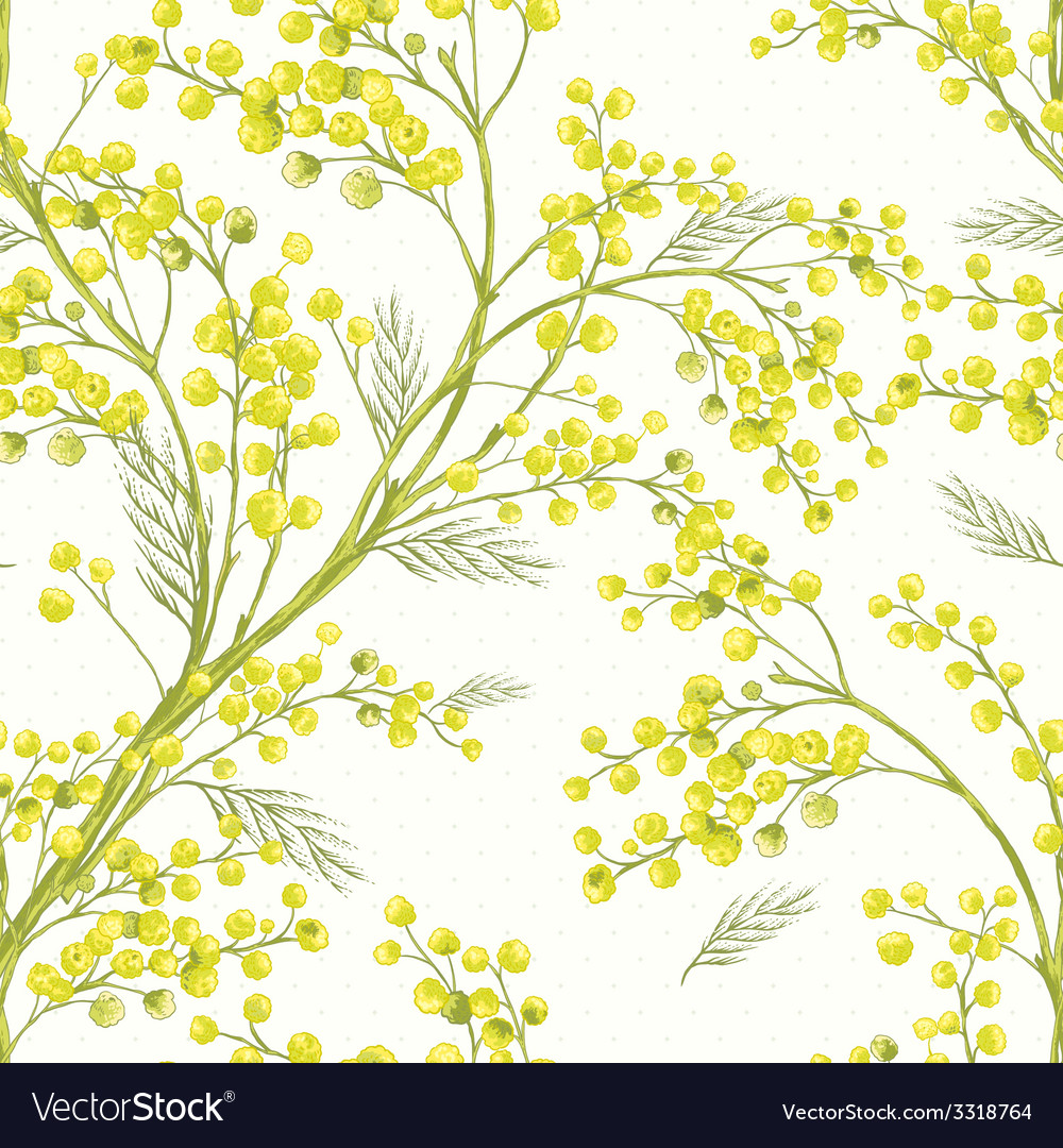 Seamless spring pattern with sprig of mimosa vector | Price: 1 Credit (USD $1)