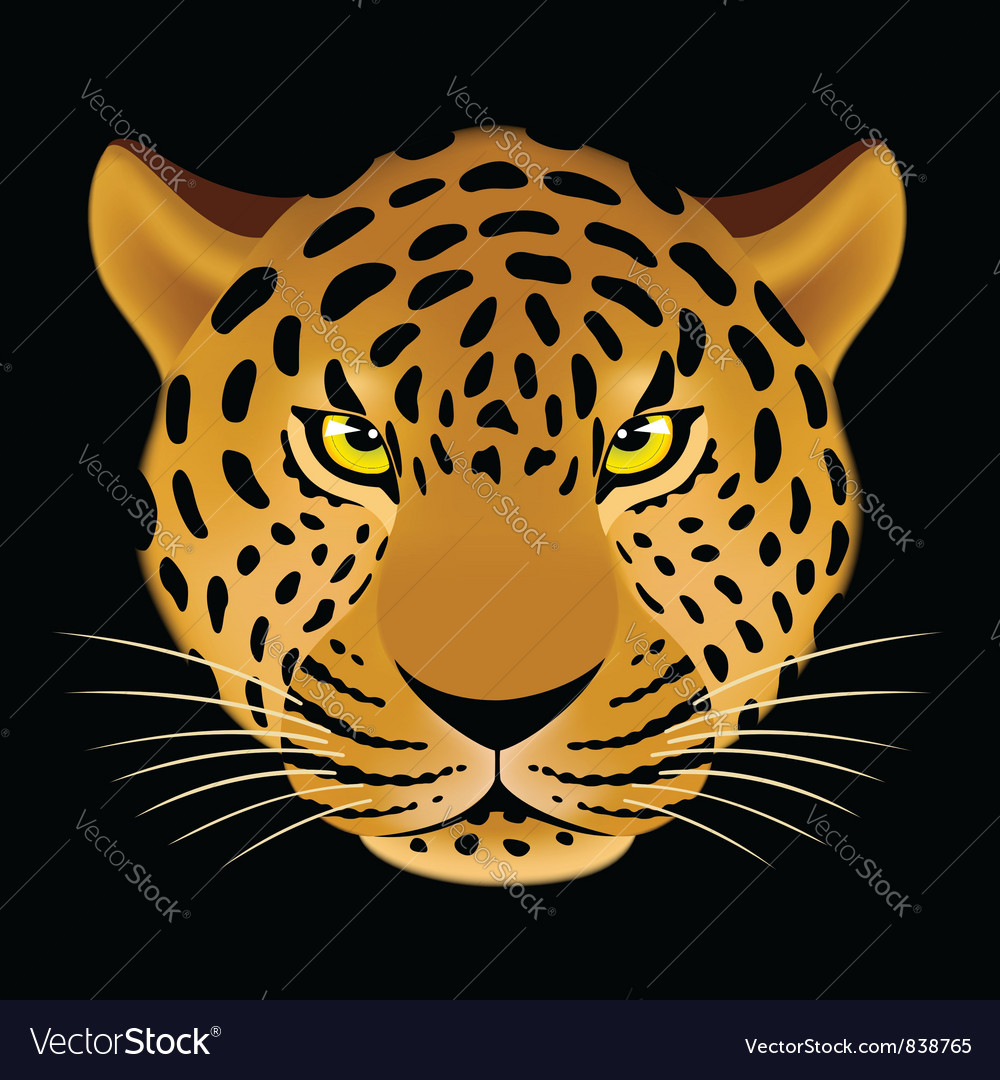 Leopard head vector | Price: 3 Credit (USD $3)