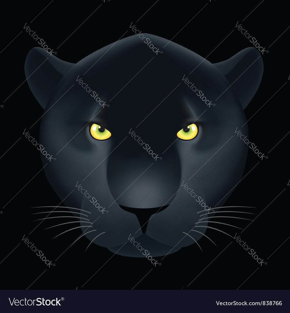 Dangerous cat vector | Price: 3 Credit (USD $3)