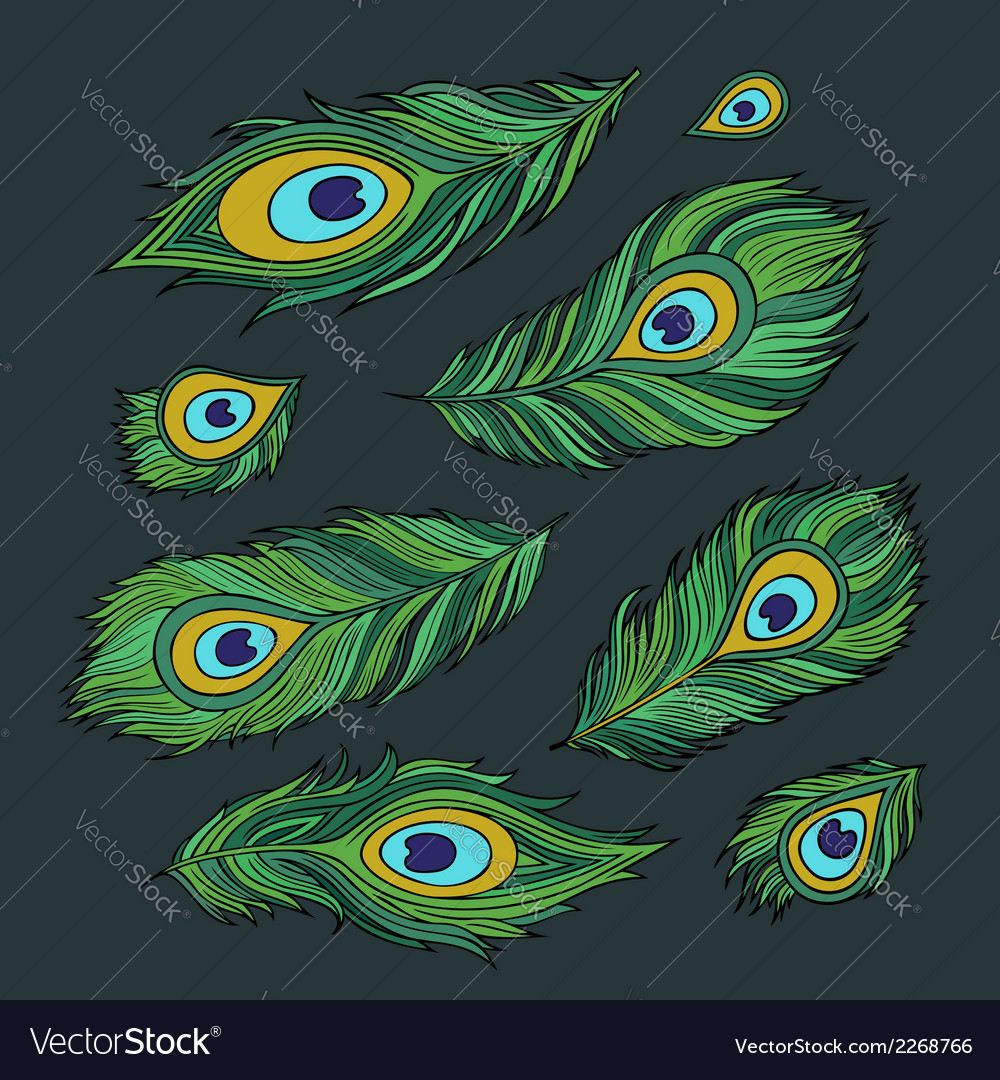 Peacock feathers abstract set vector | Price: 1 Credit (USD $1)
