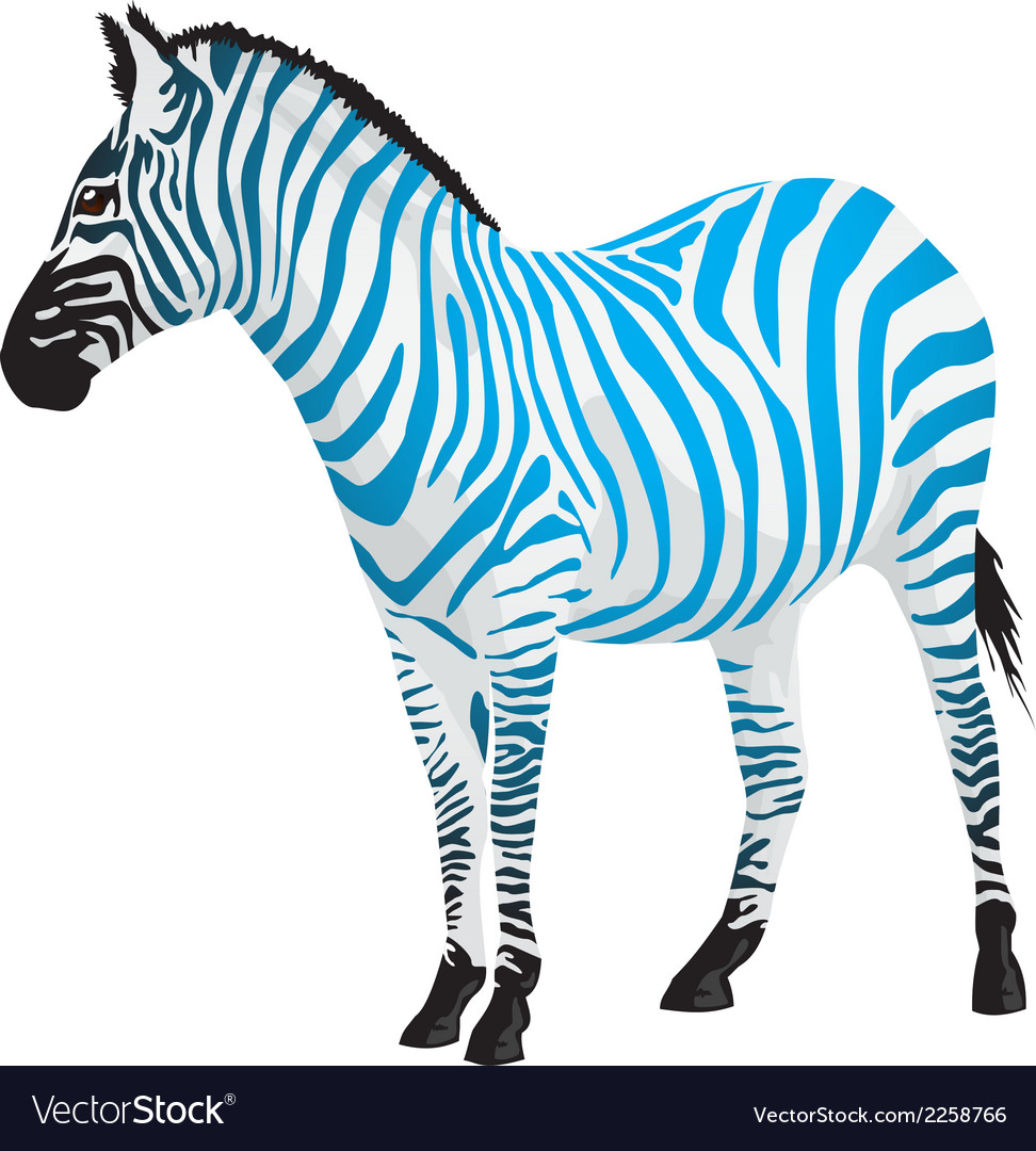 Zebra with strips of blue color vector | Price: 1 Credit (USD $1)