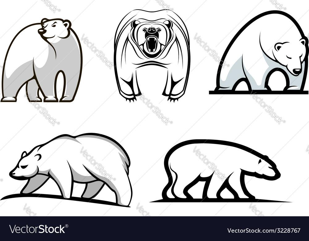 Set of cartoon polar bears vector | Price: 1 Credit (USD $1)