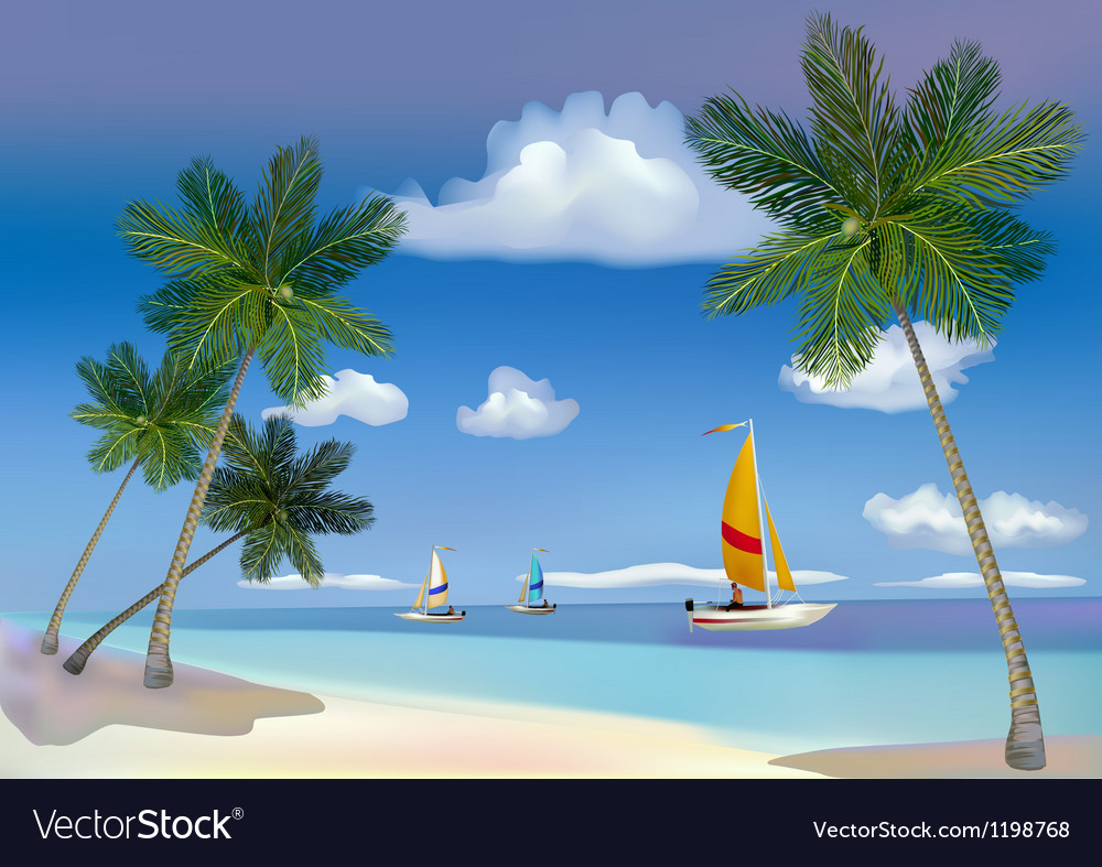 The sea yachts palm trees vector | Price: 3 Credit (USD $3)