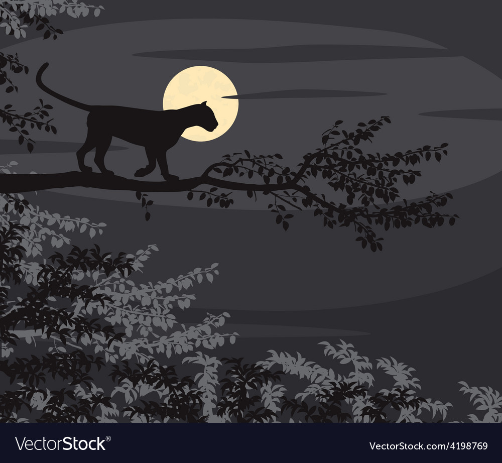 Leopard moon vector | Price: 1 Credit (USD $1)
