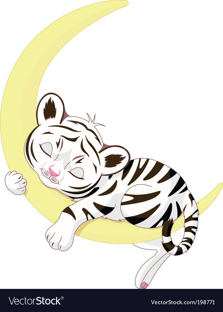 Tiger cub vector | Price: 1 Credit (USD $1)