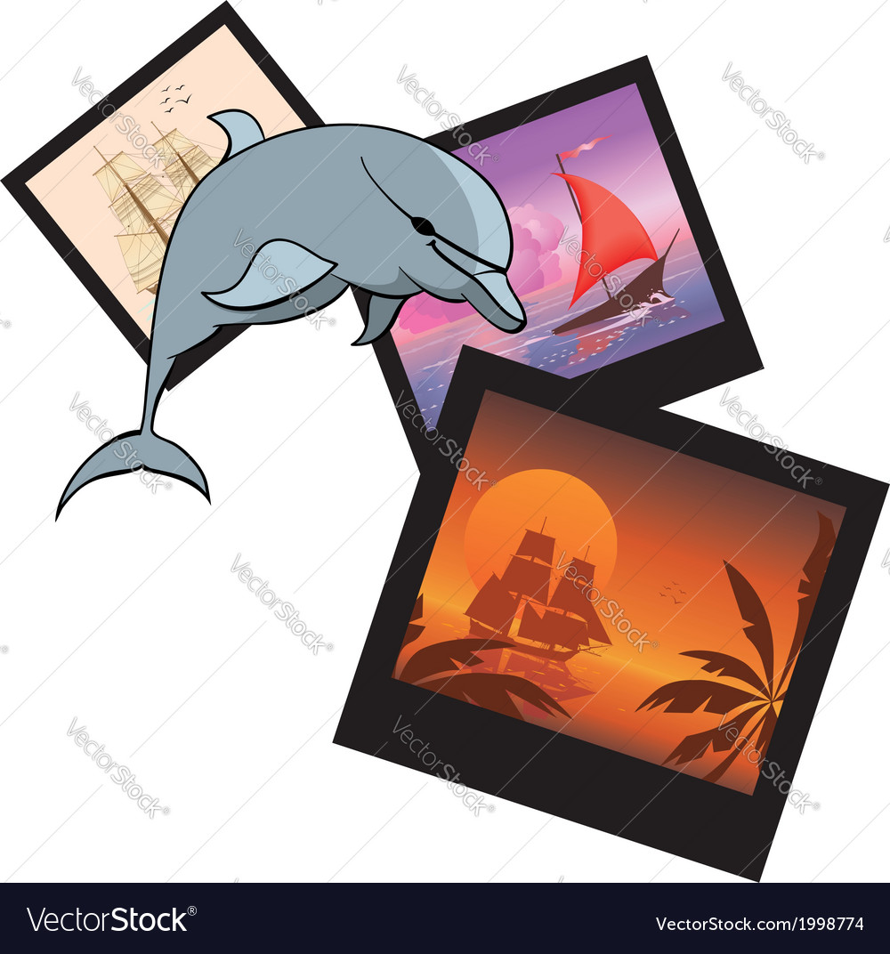 Dolphin and photoframes vector | Price: 1 Credit (USD $1)
