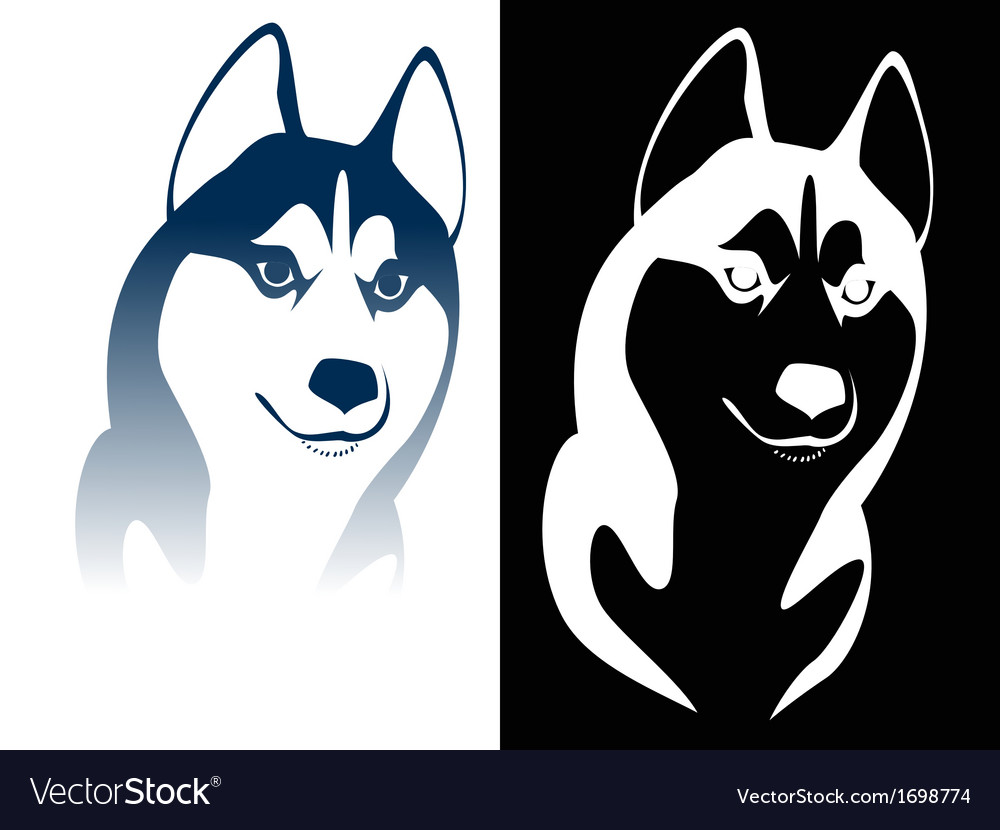 Husky vector | Price: 1 Credit (USD $1)