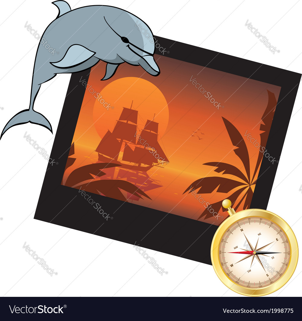 Dolphin compass and photoframe vector | Price: 1 Credit (USD $1)