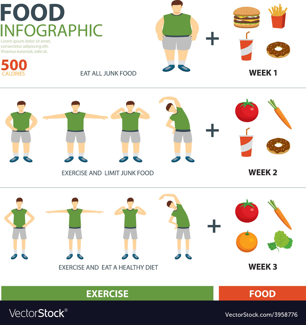 Exercise and diet infographic vector | Price: 1 Credit (USD $1)