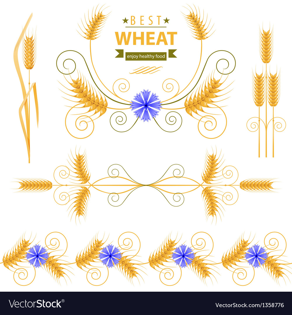 Wheat vector | Price: 1 Credit (USD $1)
