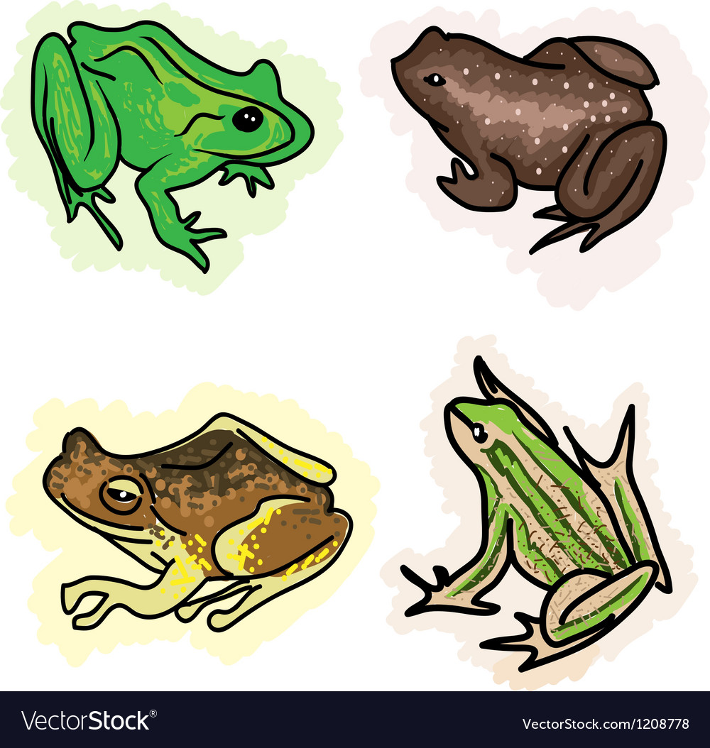Four different type of frogs vector | Price: 1 Credit (USD $1)