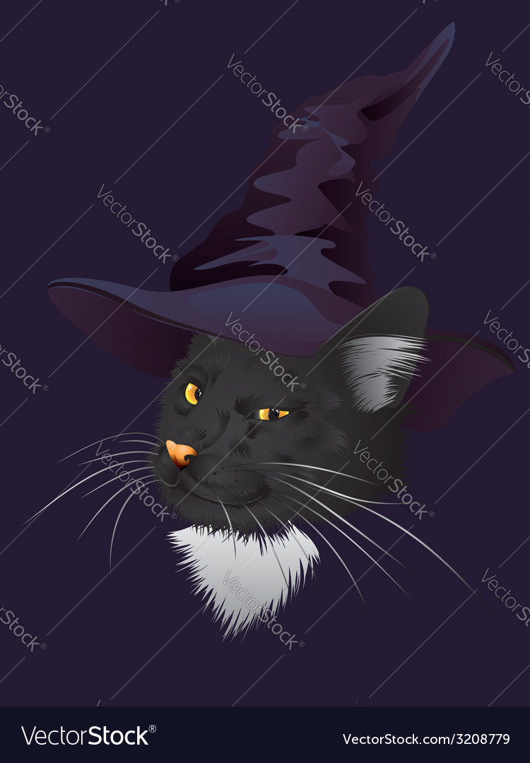 Kitty witchy vector | Price: 1 Credit (USD $1)