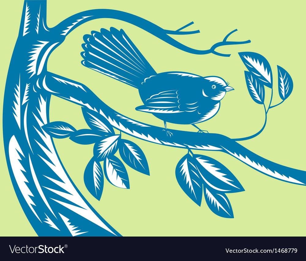 New zealand fantail bird vector | Price: 1 Credit (USD $1)