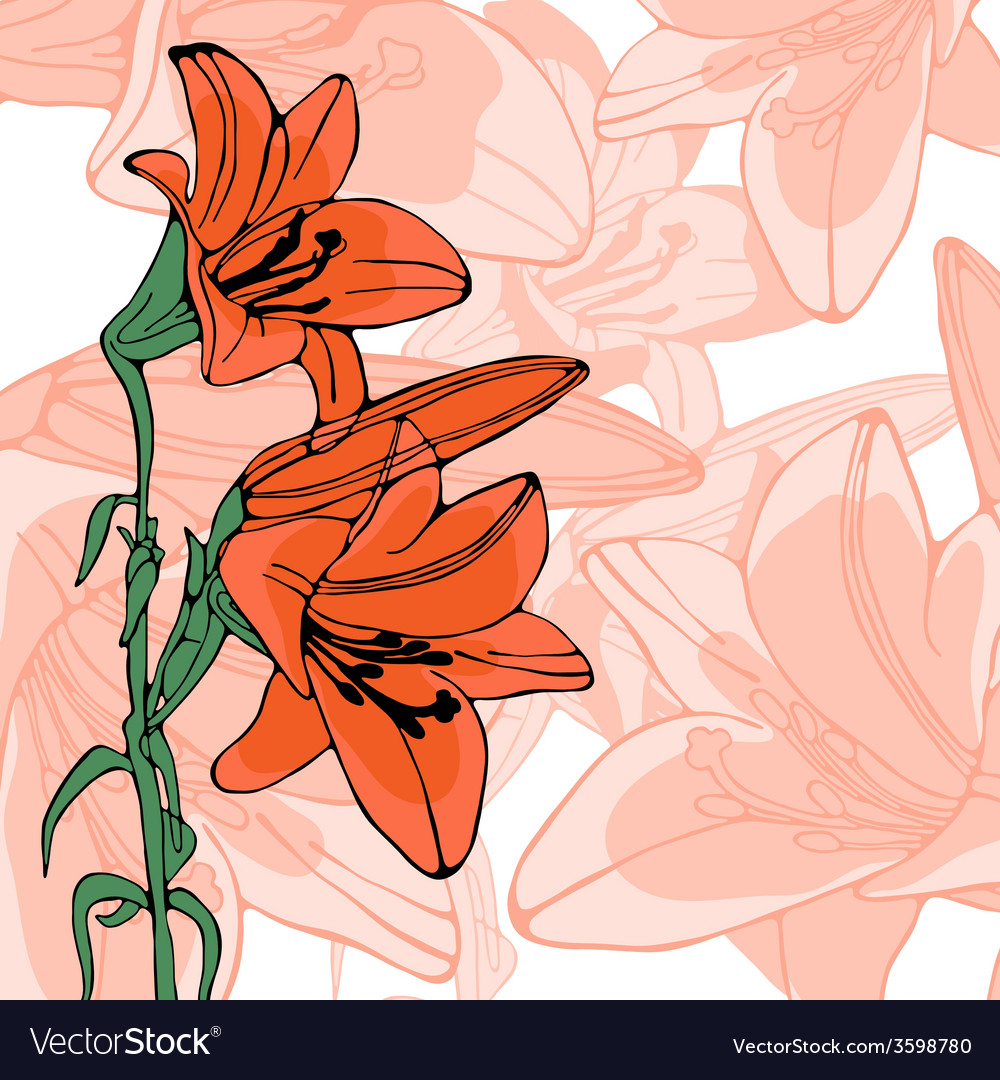 Elegant of lilly flowers vector | Price: 1 Credit (USD $1)