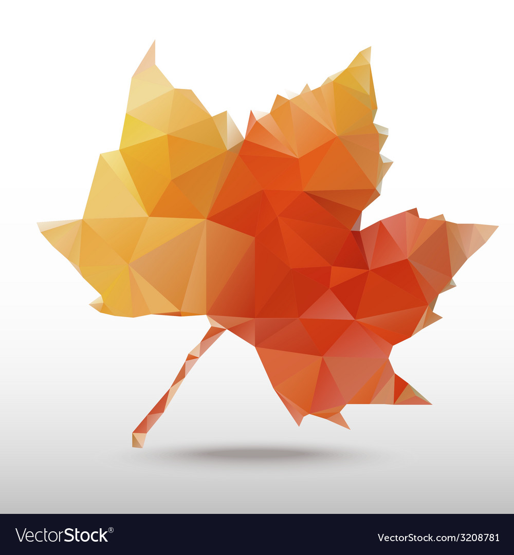 Maple vector | Price: 1 Credit (USD $1)