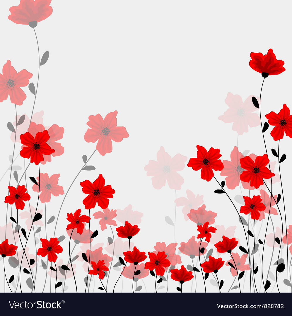 Tall poppys vector | Price: 1 Credit (USD $1)