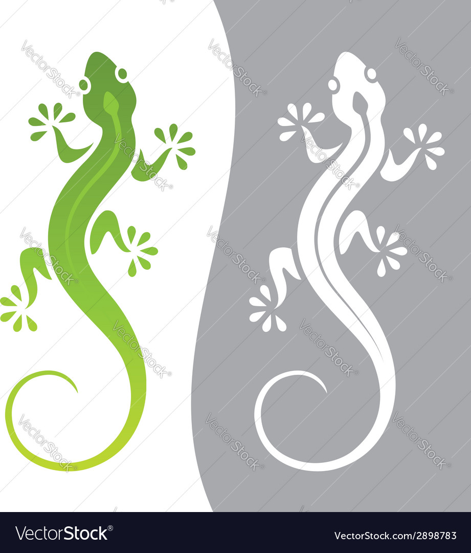 Lizard vector | Price: 1 Credit (USD $1)