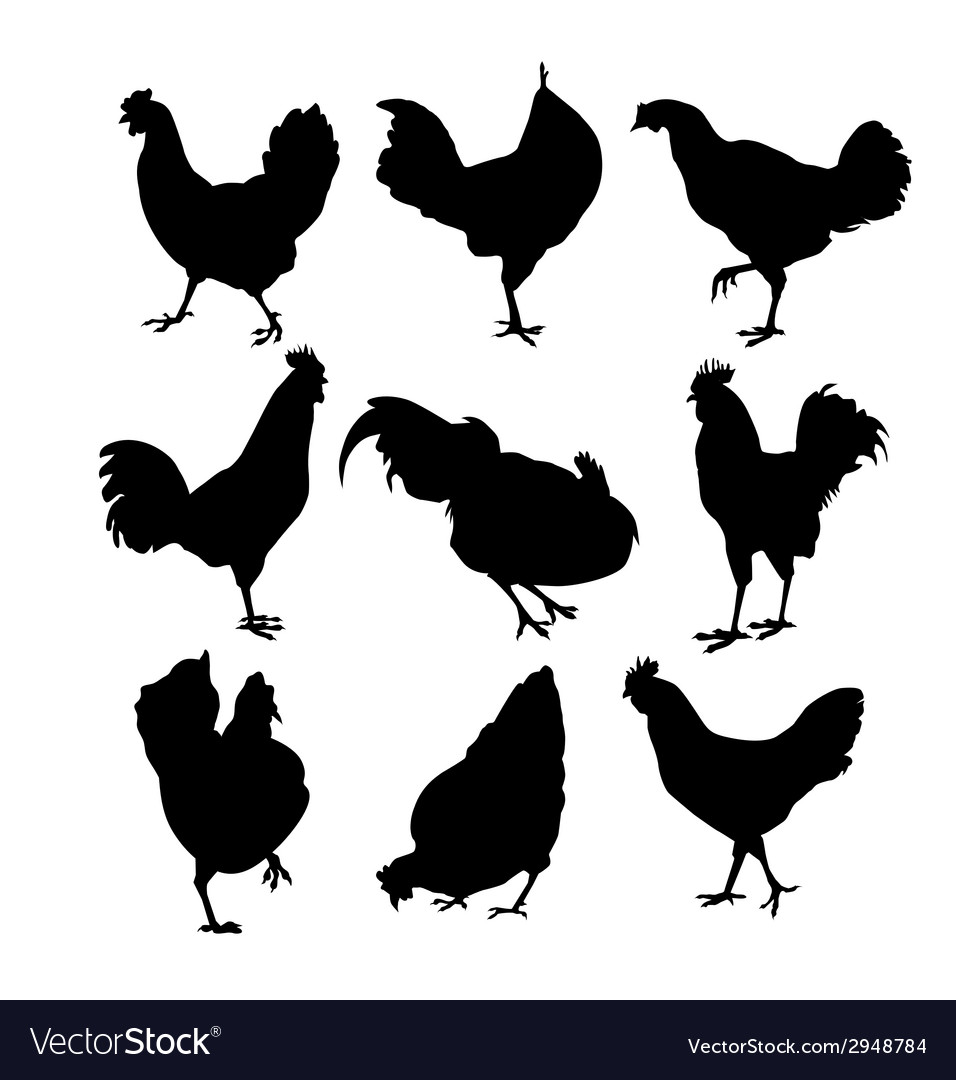 Hen and roster silhouette vector | Price: 1 Credit (USD $1)