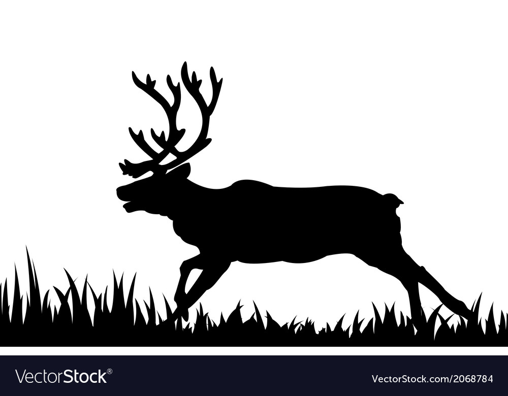 Silhouette of deer in the grass vector | Price: 1 Credit (USD $1)