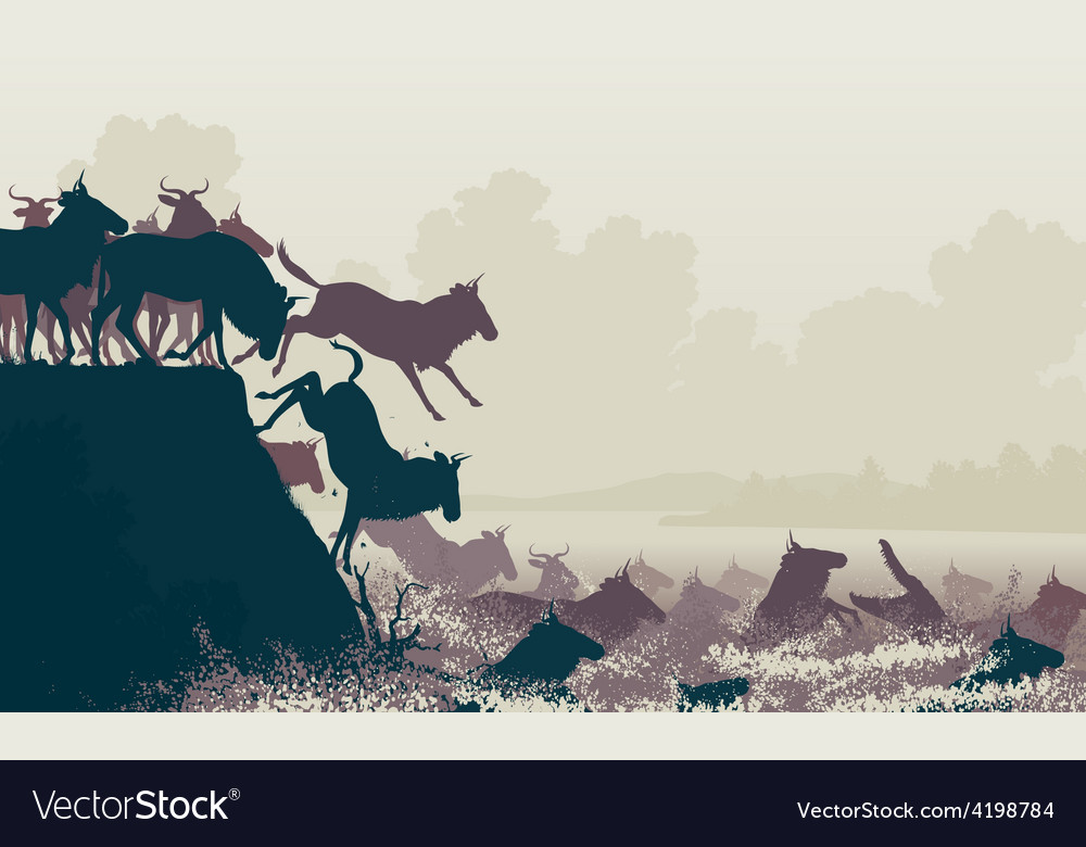 Wilderbeest river crossing vector | Price: 1 Credit (USD $1)