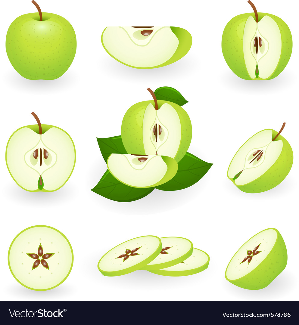 Apple icons vector | Price: 3 Credit (USD $3)
