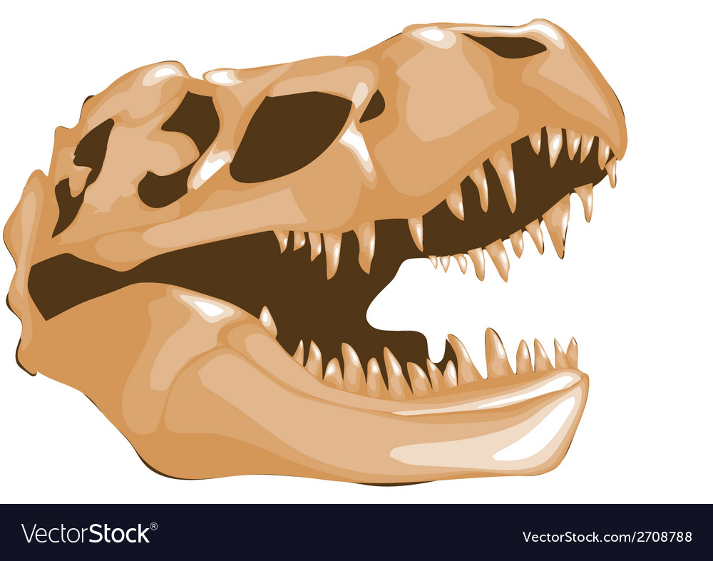 Dinosaur bones vector | Price: 1 Credit (USD $1)