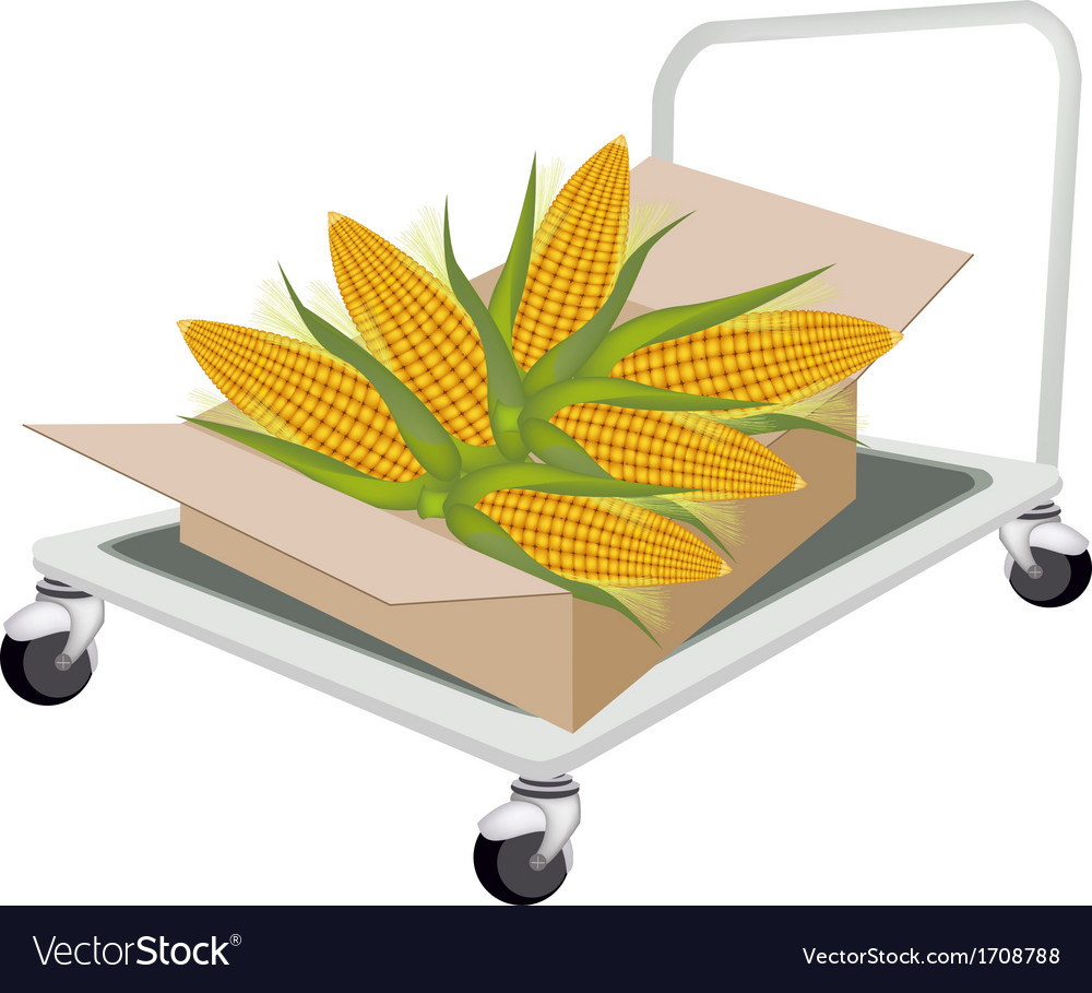 Hand truck loading fresh corns in shipping box vector | Price: 1 Credit (USD $1)