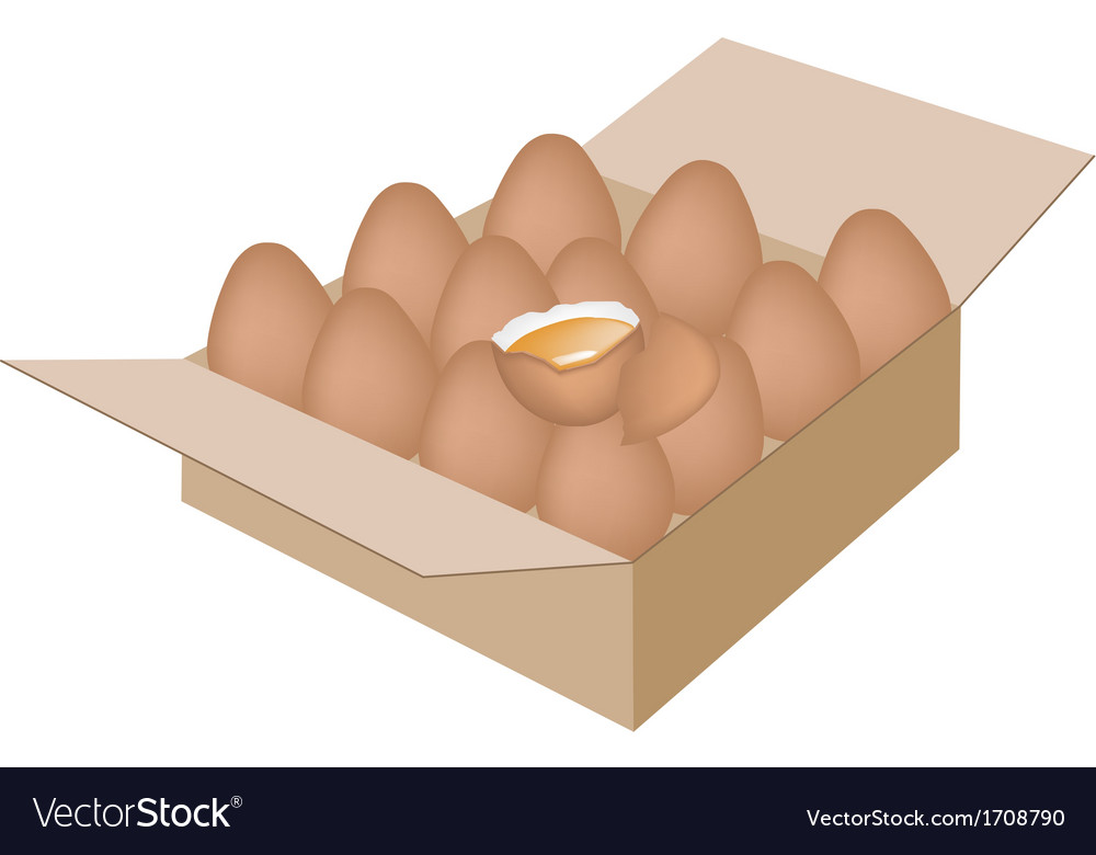 Fresh chicken eggs in a shipping box vector | Price: 1 Credit (USD $1)