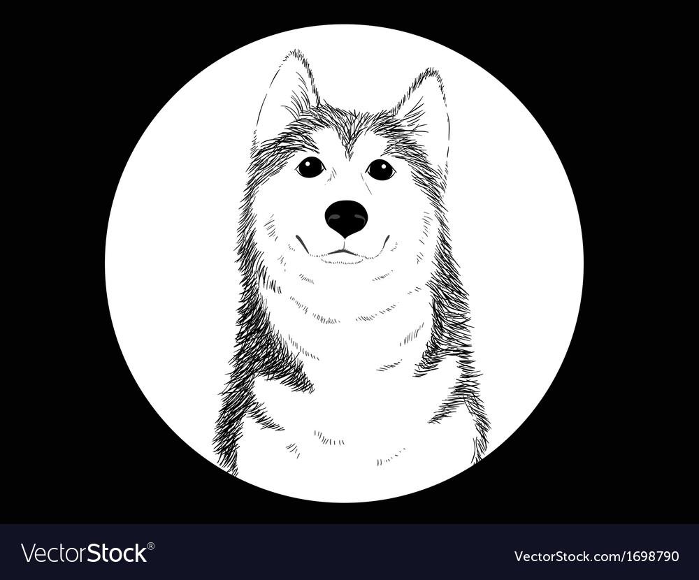 Husky b vector | Price: 1 Credit (USD $1)