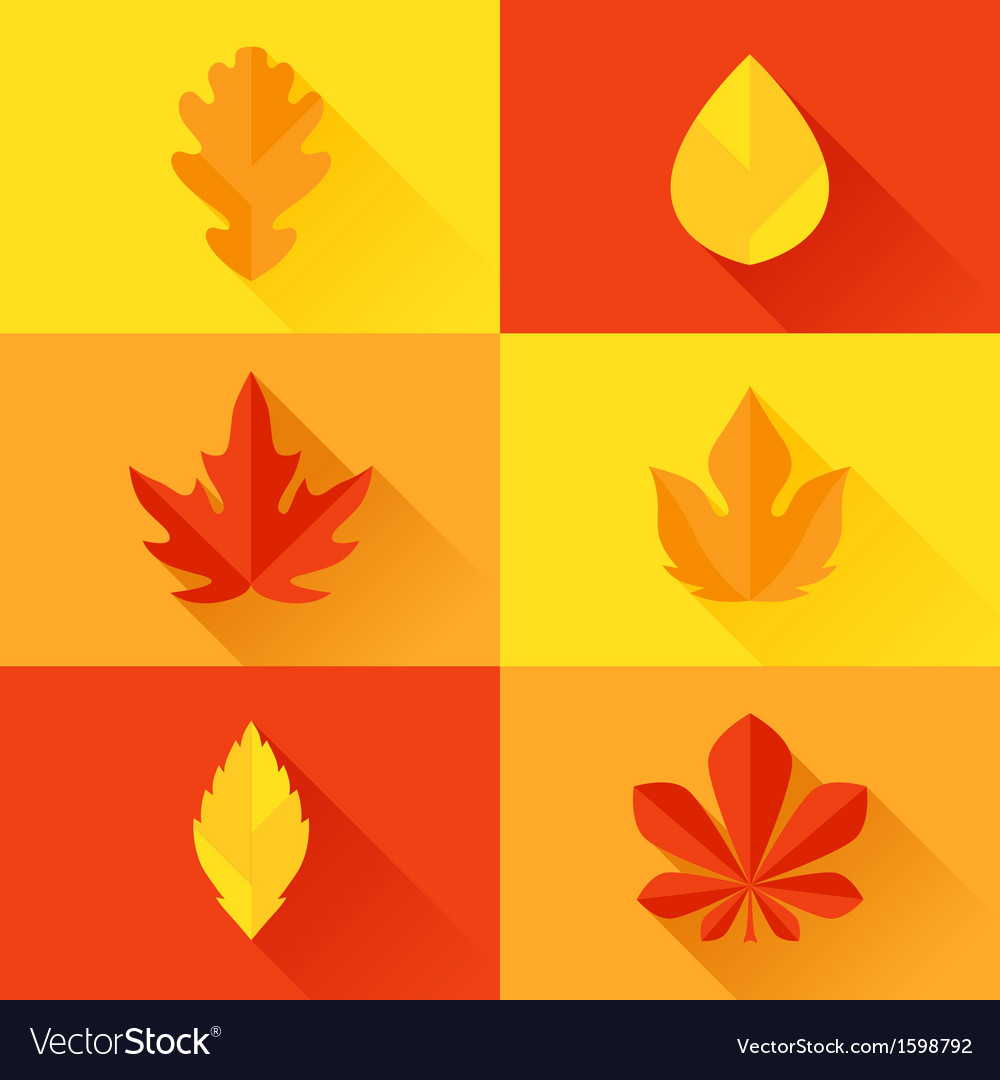 Autumn leaves in flat design style vector | Price: 1 Credit (USD $1)