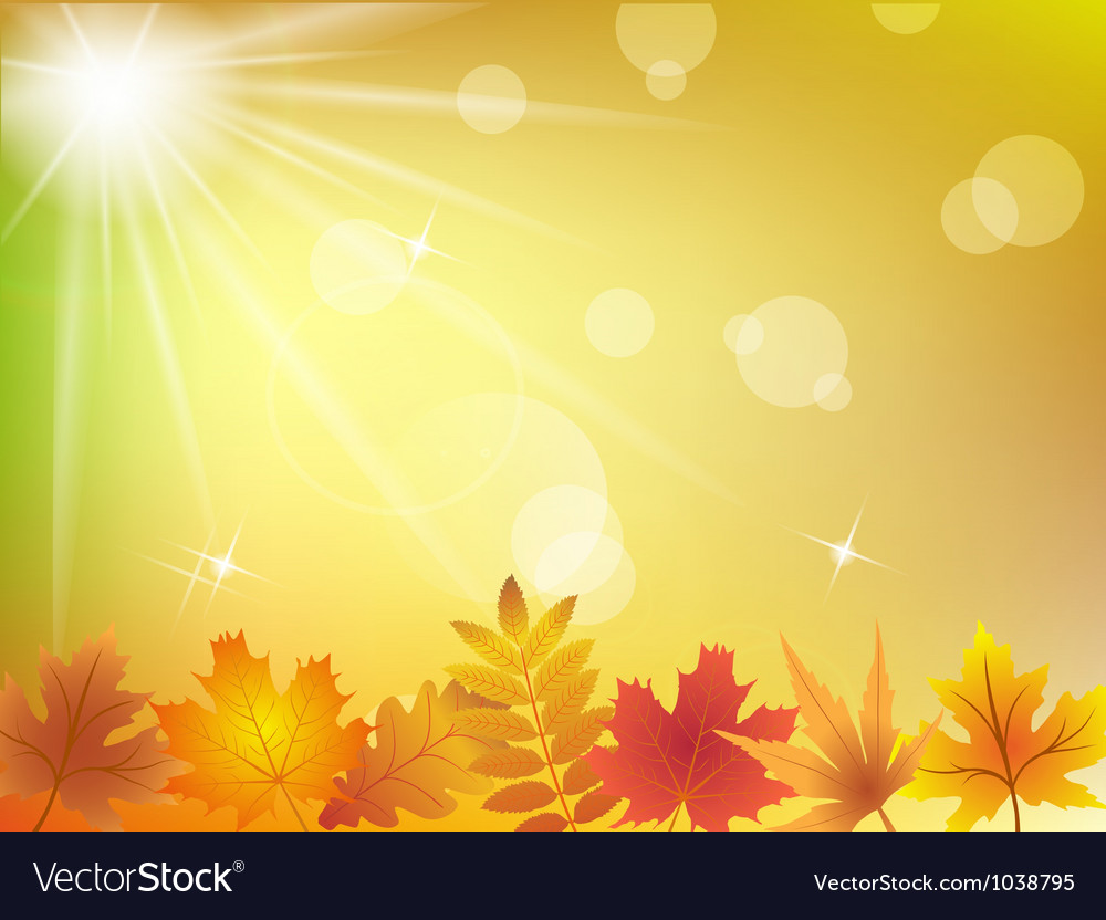 Autumn leaves in sunlight background vector | Price: 1 Credit (USD $1)