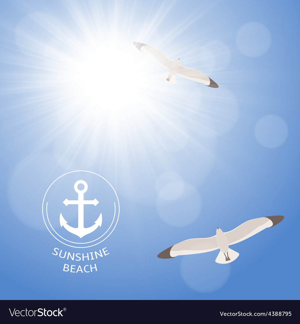 Shining summer sun with seagulls vector | Price: 1 Credit (USD $1)