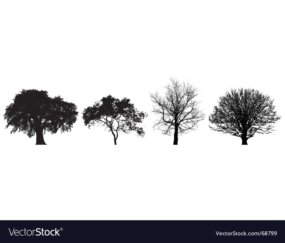 4 trees vector | Price: 1 Credit (USD $1)