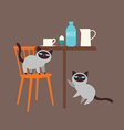 Kittens and milk vector