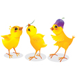 Three cartoon chicken vector