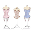 Variety of sexy vintage corsets vector