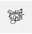 Simple text design for barbecue and grill concept vector
