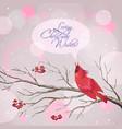 Christmas snowy rowan berries bird card vector